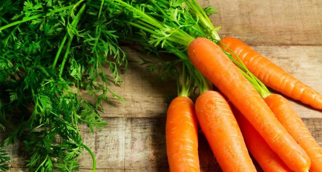 carrotte_101720998