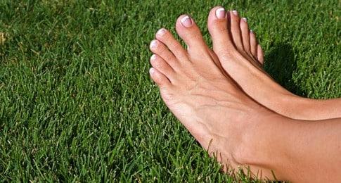 pieds_46029091_web