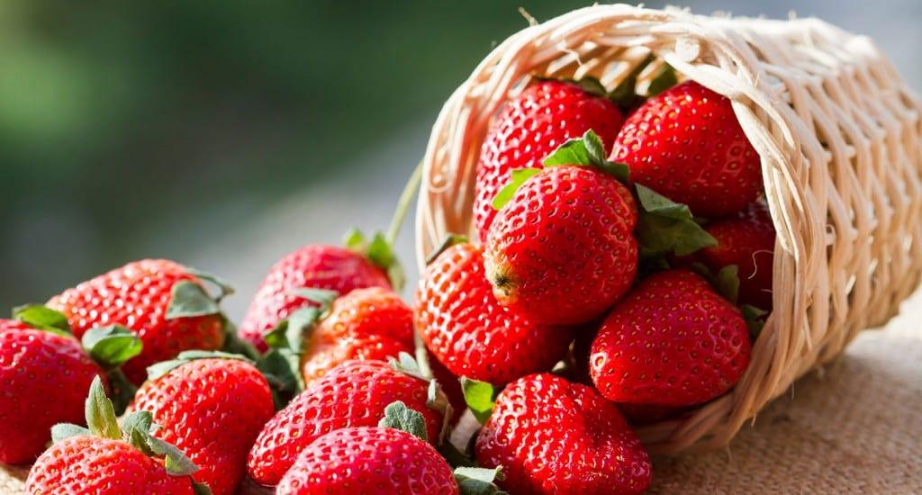 fraise_165452462_web
