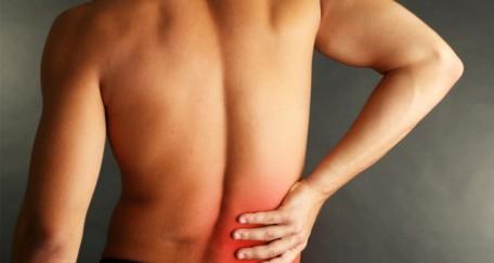 Le dos et ses maux