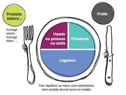 schéma repas équilibré
