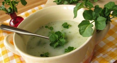 soupe_cresson_76421413_web