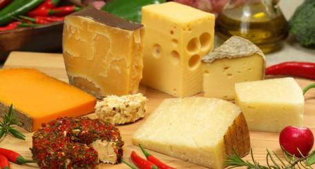 La France, célèbre pour ses nombreux fromages !
