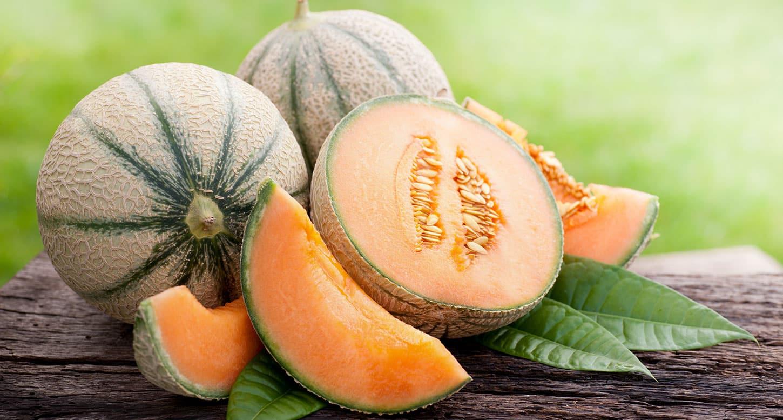 melon_137502986