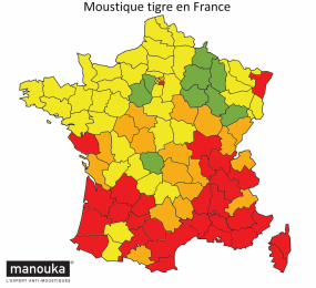 Moustique tigre en France