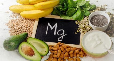 aliments riches magnésium